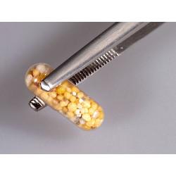 Aquael zestaw przyssawek śr. 36mm 4szt