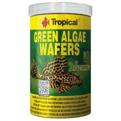 EHEIM 2616111 WKŁAD GĄBKOWY DO FILTRA CLASSIC 2211