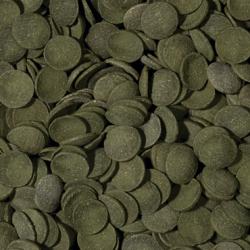 EHEIM 7312738 USZCZELKA GŁOWICY DO CLASSIC 2215(350)