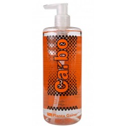 AQUA ART CARBO 500ML