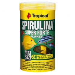 Versele-laga Crispy Sticks Rabbits-Chinchillas Forest Fruit 110g 2 kolby owoce leśne dla królika i szynszyli