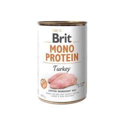 Plantis Vallisineria nana