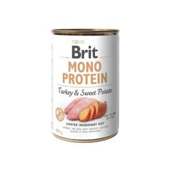 Plantis Elodea densa